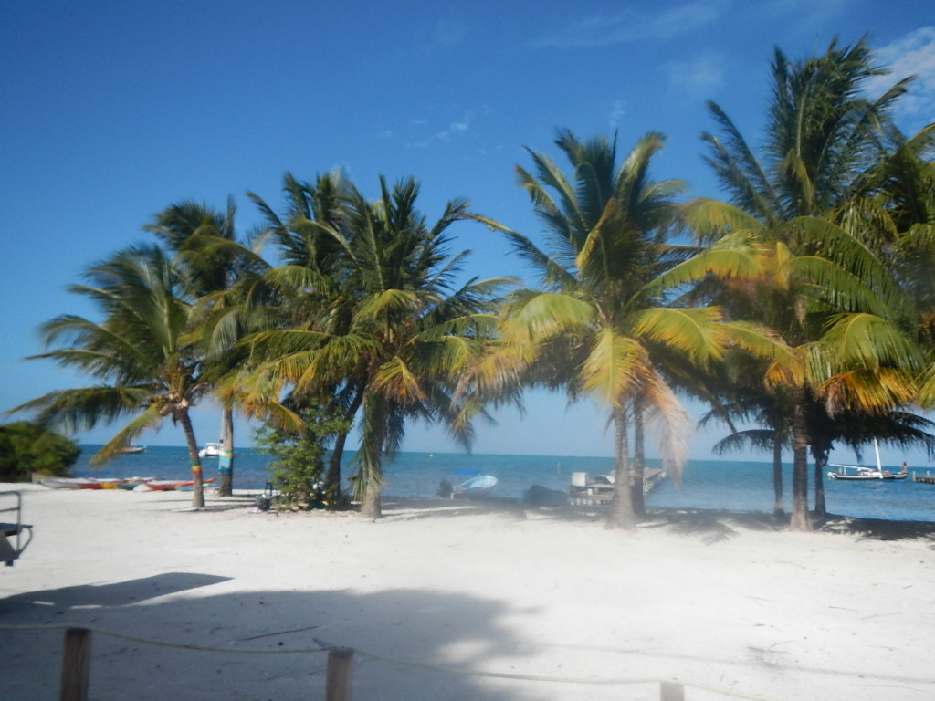 Belize Island Expeditions Review